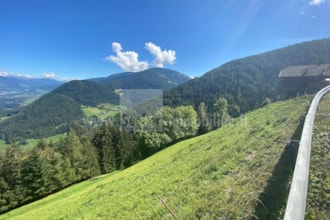 Wiese und Wald in steiler Hanglage oberhalb Montal zu verkaufen